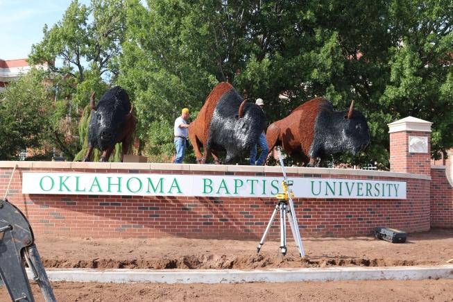 bison-statues-6-by-alyssa