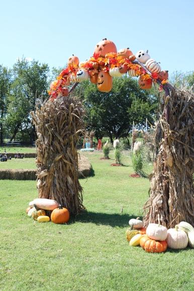 pumpkin2-by-alyssa