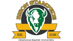bison-stampede