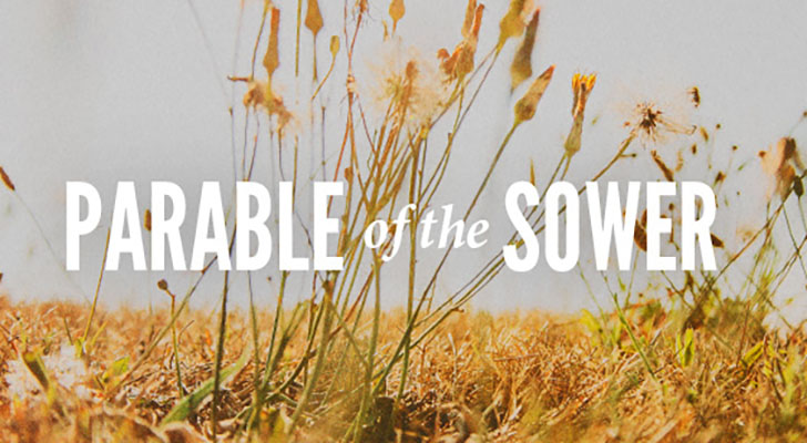 Myas Weekly Insight The Parable Of The Sower on Staff Language Arts