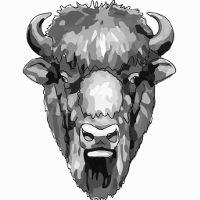 The Bison Newspaper